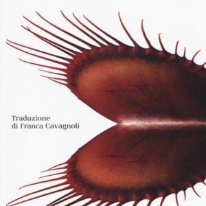 """Dietro l'angolo: """"La carne"""" di Emma Glass"""